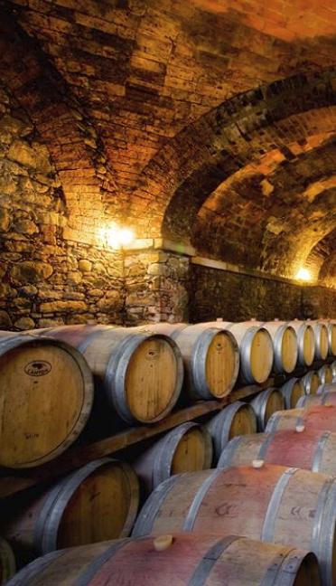 Die Weinwege